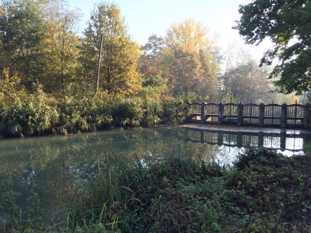autunno-al-laghetto-3-2